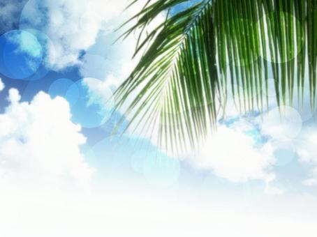 Sky and light background 30