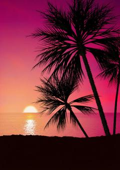 Dusk of tropical country 02