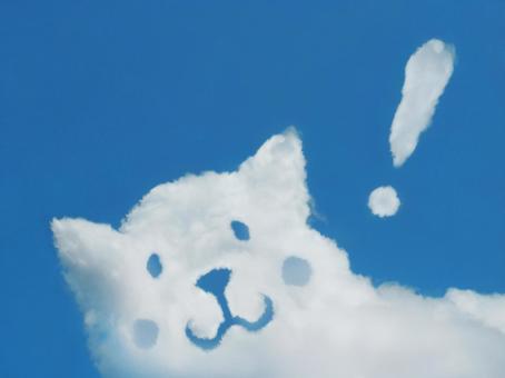 Sky and cloud 119