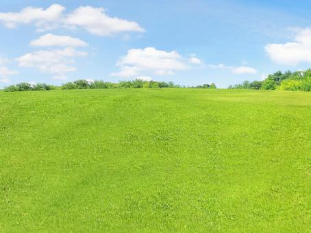 [Grass blue sky meadow background]