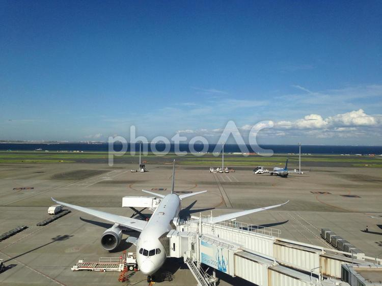 羽田空港 飛行機の写真
