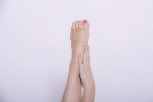 여성의 다리 12