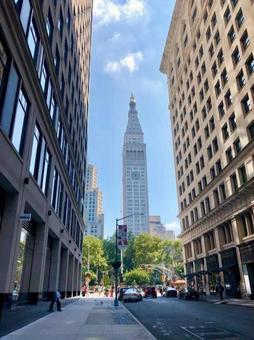 뉴욕의 거리 풍경