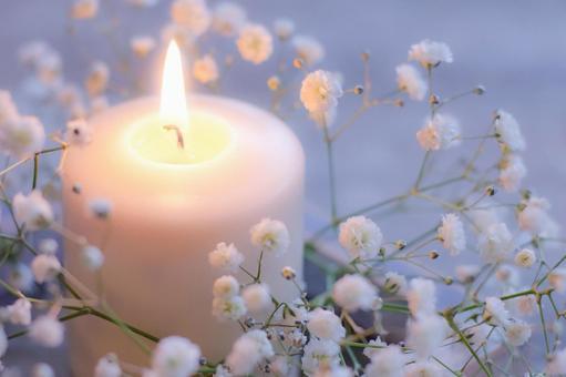 안개 잔디와 촛불
