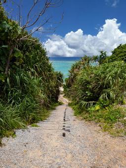 뒷면 마에다 해변으로가는 길