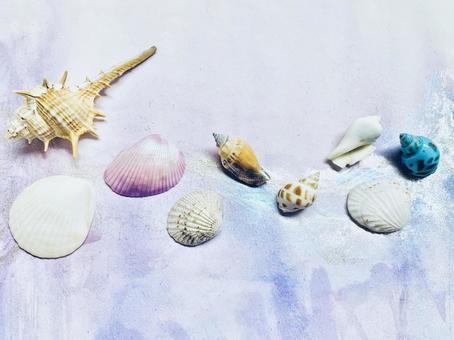 Underwater image Seashell background