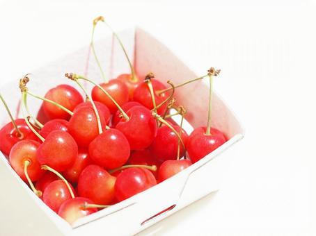 Cherry. 01