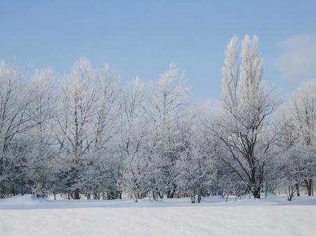 Lake Ice 09