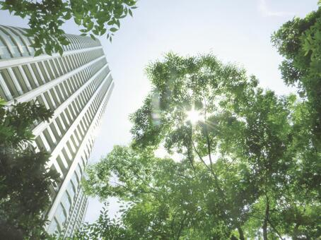 Buildings and sunbeams