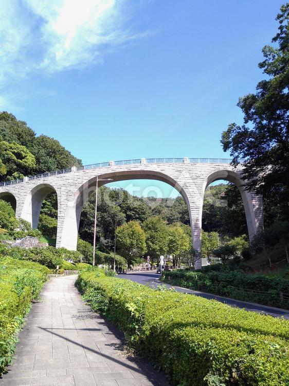 七沢森林公園の写真