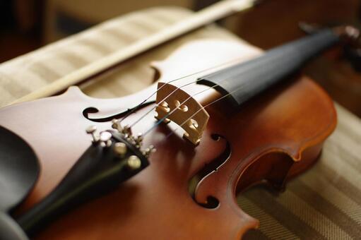 처음 바이올린