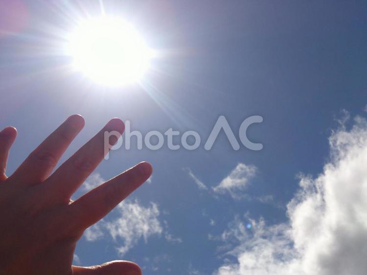 手の平と太陽/2の写真