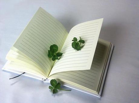 Four leaf clover and a diary 3