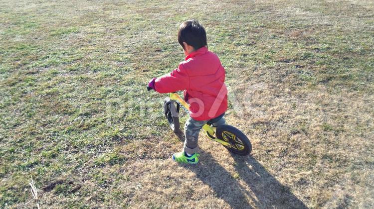 ストライダーに乗る子供の写真