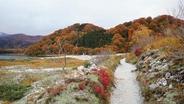 오소 레 야마 산 5