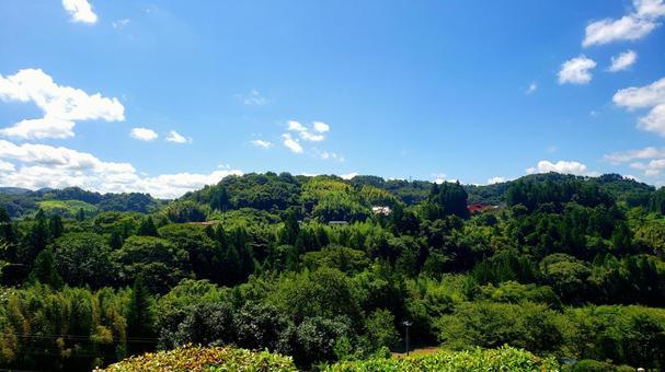 Satoyama summer landscape
