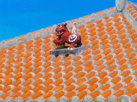 Roof top seaser