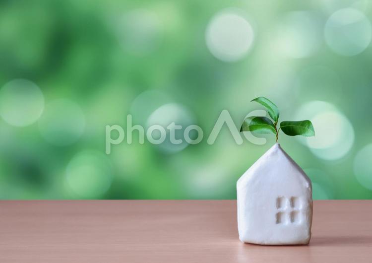 緑背景の家の模型の写真