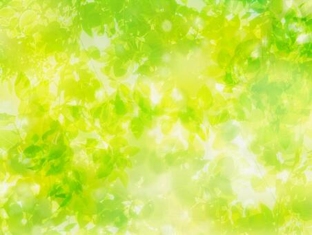 Abstract background of fresh green sunbeams image on the entire surface