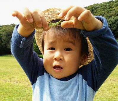 The child who caught the grasshopper