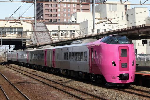 기하 261 계 해당화 편성 · 도마 코 마이 역