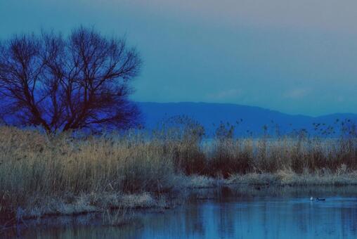 호수 秋景
