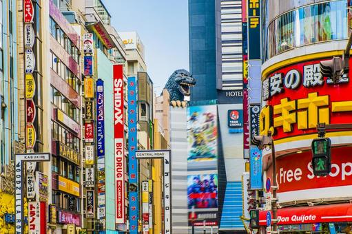 Shinjuku Kabukicho Buildings