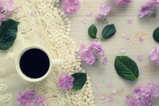 Hydrangea and break time
