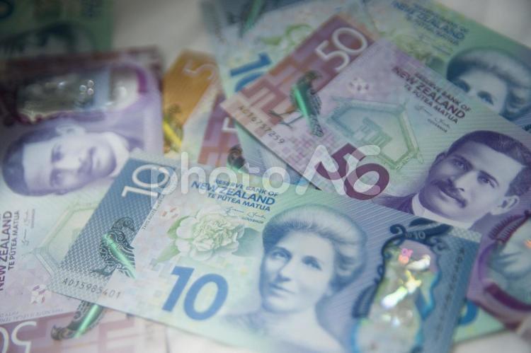 外国の紙幣2の写真