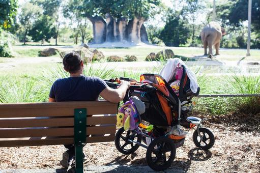 爸爸和折叠式婴儿车1,看大象在动物园