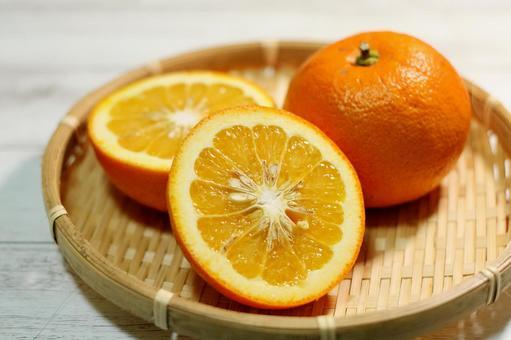 오렌지 : 비터 오렌지 3