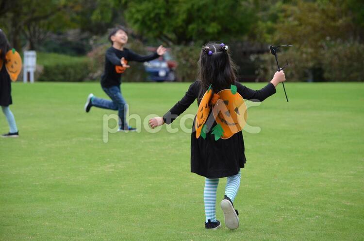 女の子 ハロウィン仮装 かぼちゃの蝶々 で遊ぶ 後ろ姿の写真