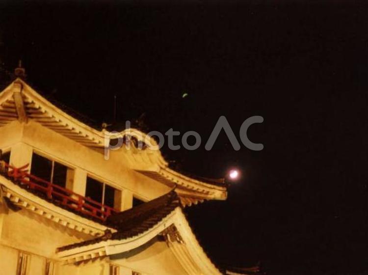 夜の尾道城と輝く星の写真