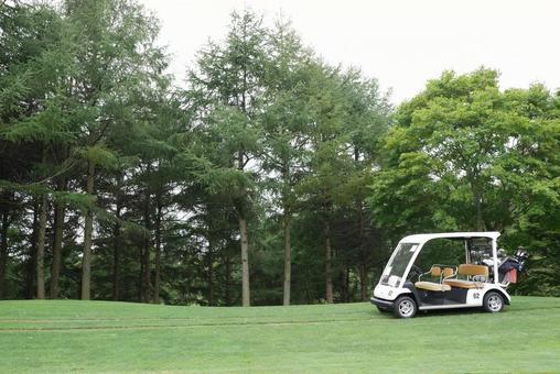 Golf course golf cart