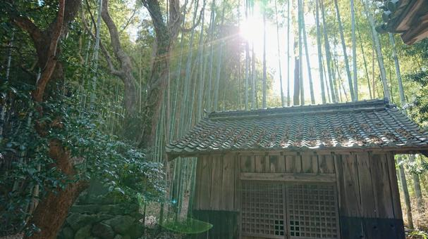 Sunbeams at the shrine