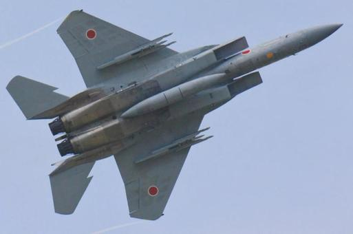 F 15 Fighter Air Self Defense Force