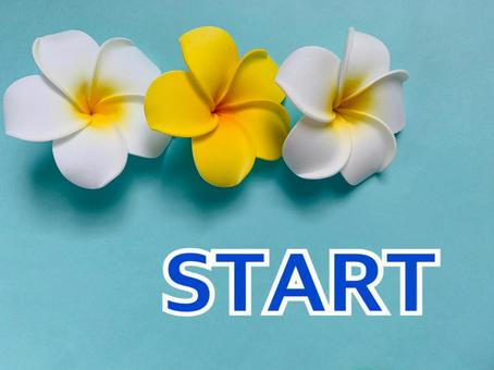 Start plumeria