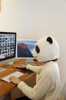 Designer Panda