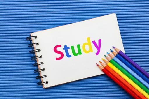 STUDY study study study