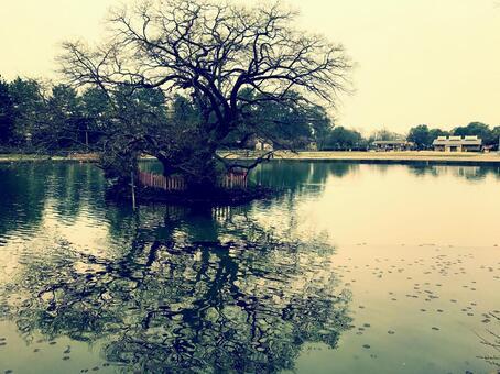 Tian Wang Chuan Park