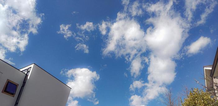 푸른 하늘 주택 거주 이미지