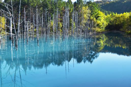 Biei · Blue pond (including reflection)