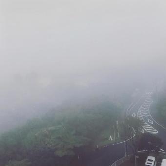 짙은 안개 날의 풍경