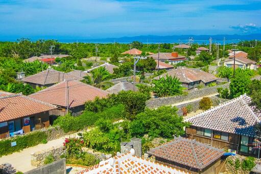 Okinawa's private house