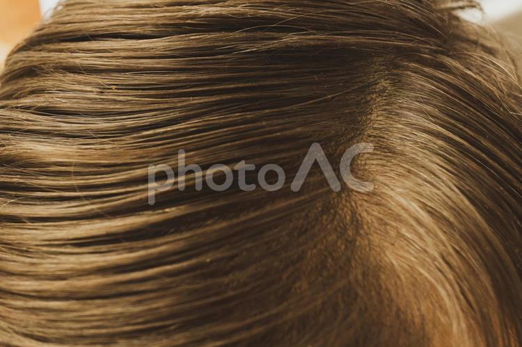 髪の毛25の写真
