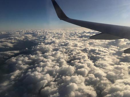 비행기에서보기