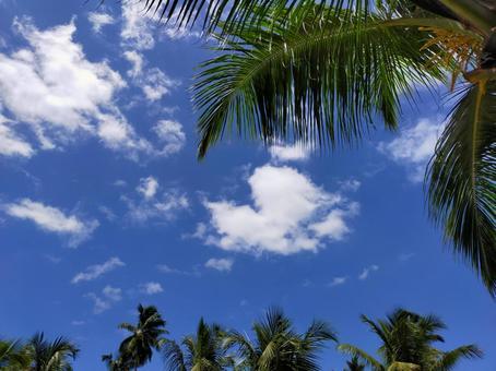 세이셸 공화국 남국의 하늘