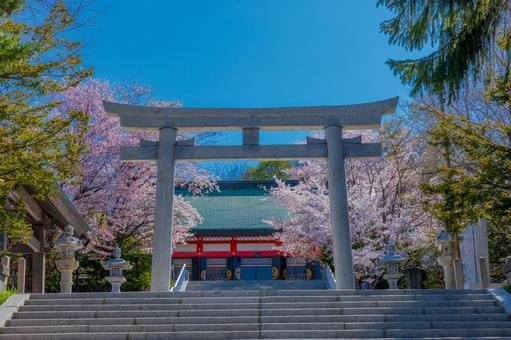 鳥吉和小樽市住吉神社