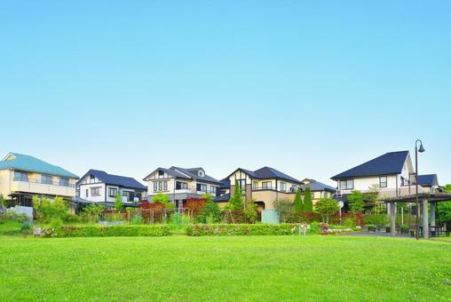 녹색 잔디와 주택지