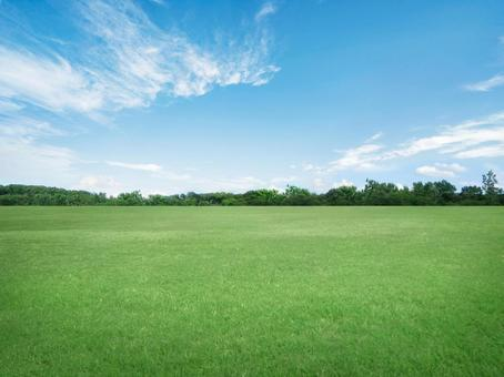 Lawn and blue sky